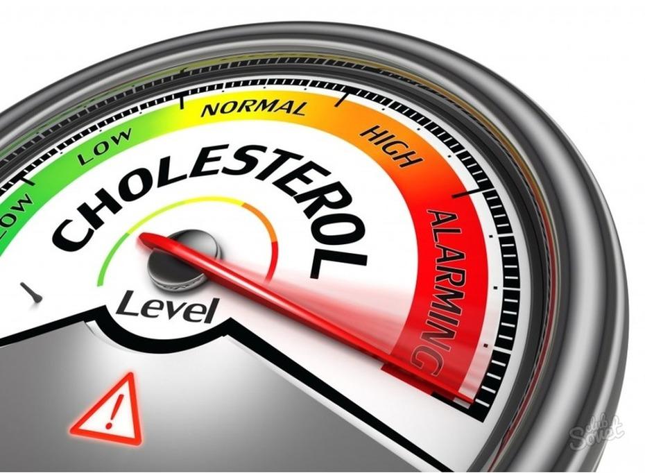 голод и холестерин